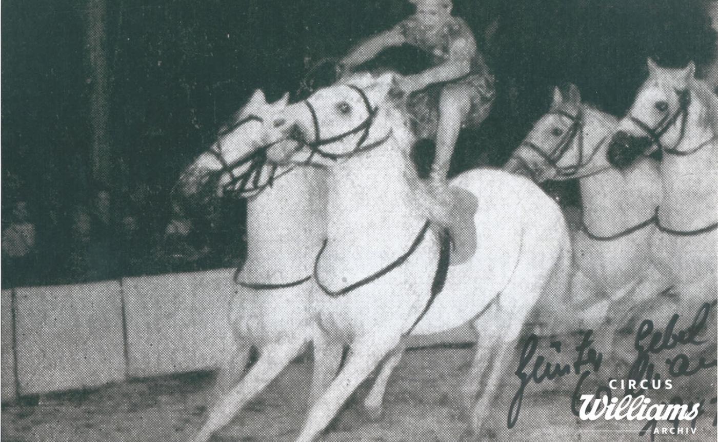 1947 Programmbilder